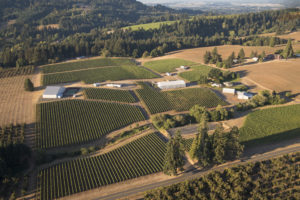 Summer Winemaker's Dinner @ Anne Amie Twelve Oaks Estate | Sherwood | Oregon | United States